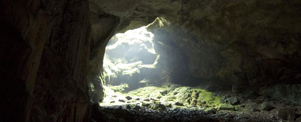 зарубежный фильм про двоих мальков которые нашли в пещере летающий объект. при контакте с ним у одного мальчика появилась чешуя на руке, после чего иногда рука становилась невидимой