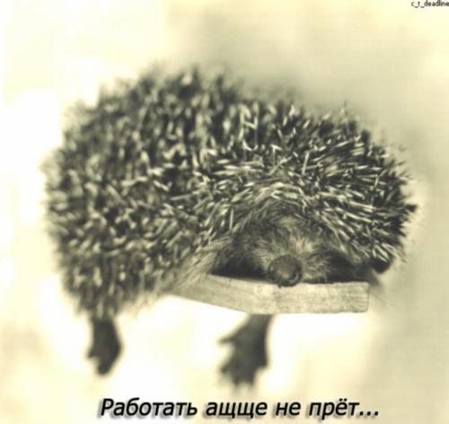 """Песня из спектакля """"Служанки"""""""